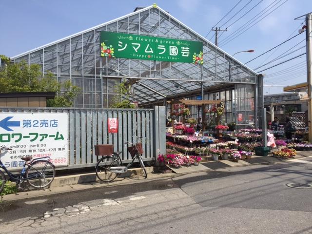 f:id:Sanpo-yoshi2016:20170429221811j:plain