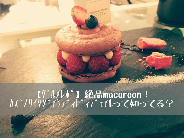 f:id:Sanuki:20170403083556j:image