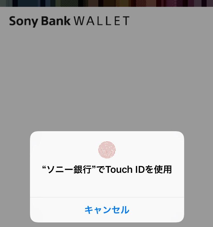 f:id:Sasatoo0521:20190302125703j:plain