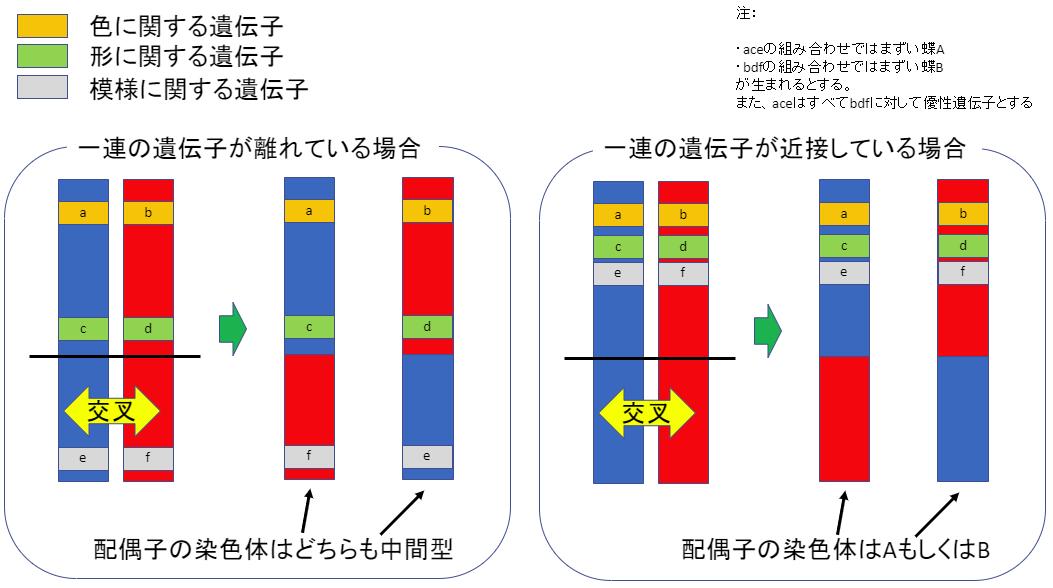 f:id:SatoshiWatanabe:20190713170436p:plain