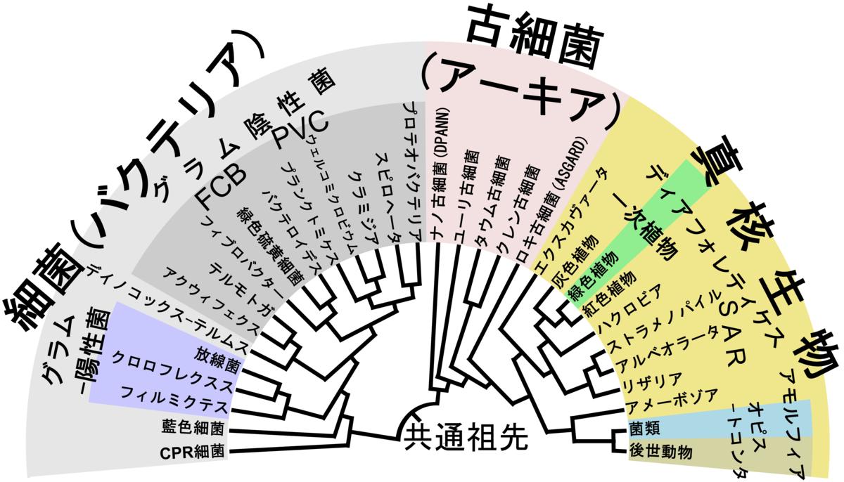 f:id:SatoshiWatanabe:20190803101937p:plain:w400