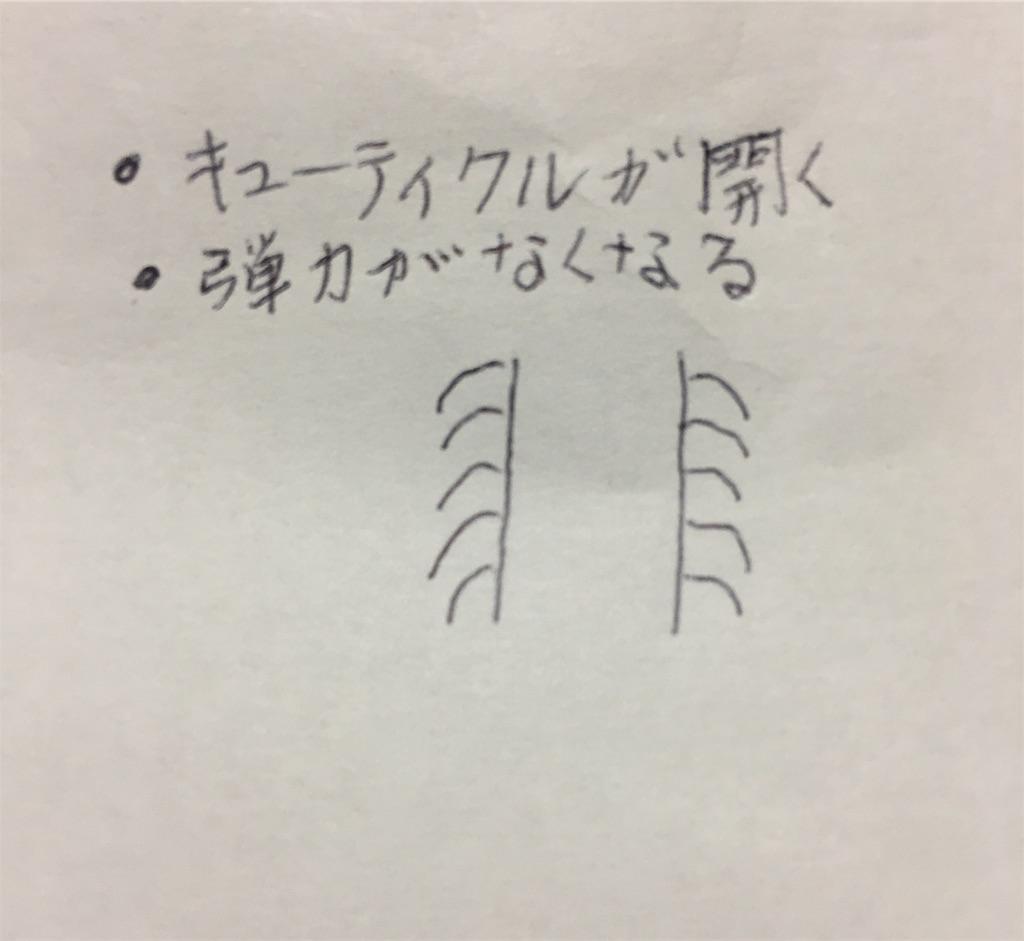 f:id:Satoyuki:20190905005022j:image