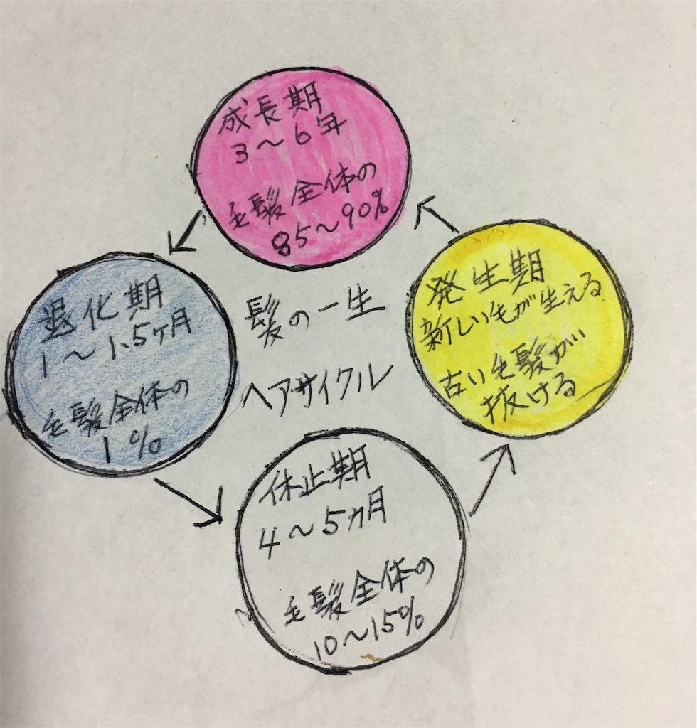 f:id:Satoyuki:20190920233410j:image