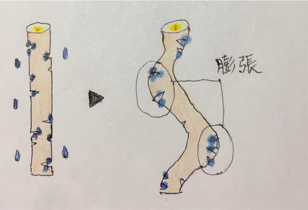 f:id:Satoyuki:20191014171922j:image