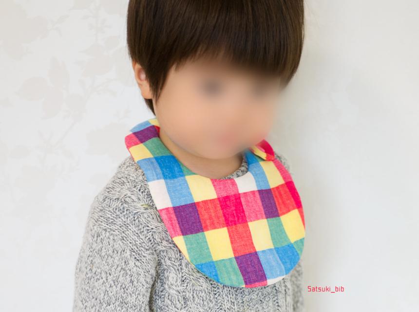 f:id:Satsuki_bib:20181021145904j:plain