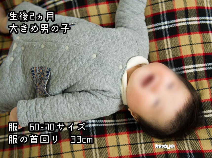 f:id:Satsuki_bib:20181205024739j:plain