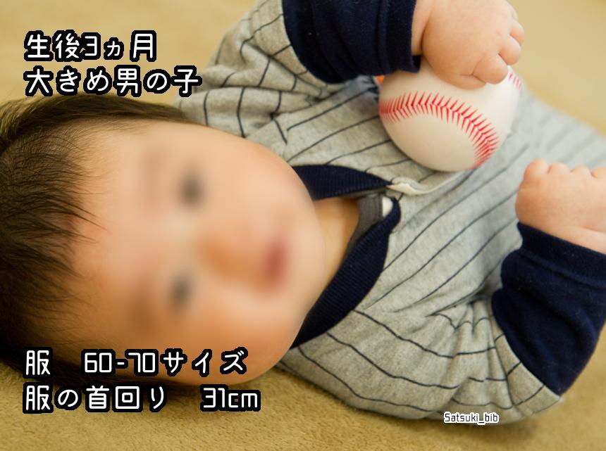 f:id:Satsuki_bib:20181205025008j:plain