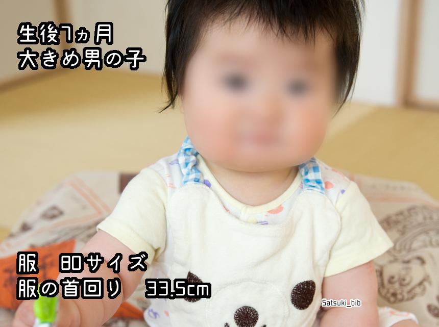 f:id:Satsuki_bib:20181205025608j:plain