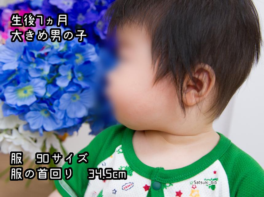 f:id:Satsuki_bib:20181205025626j:plain