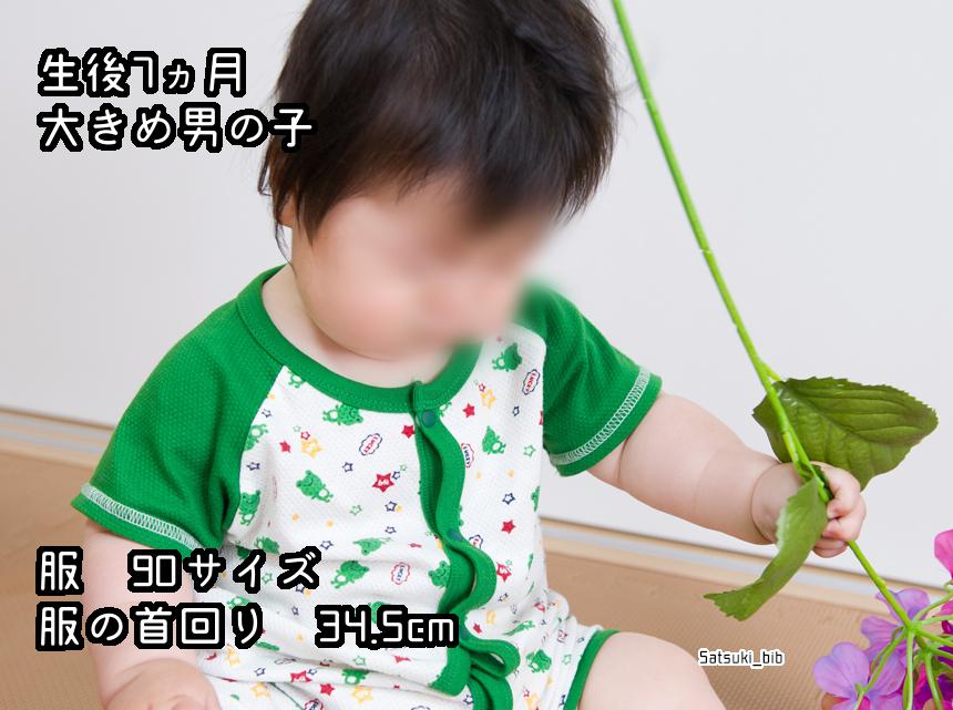 f:id:Satsuki_bib:20181205025630j:plain