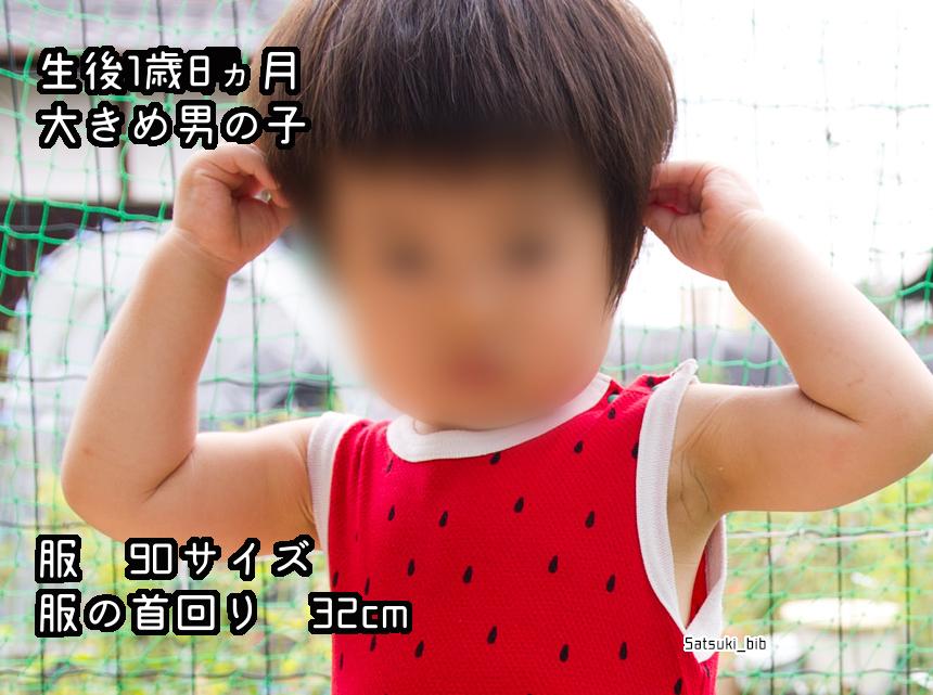 f:id:Satsuki_bib:20181205025659j:plain