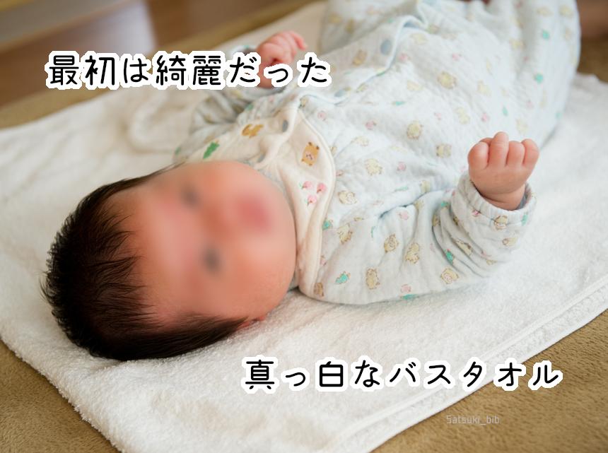 f:id:Satsuki_bib:20181223230145j:plain