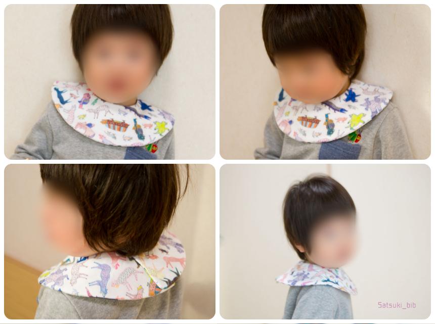 f:id:Satsuki_bib:20190301063918j:plain
