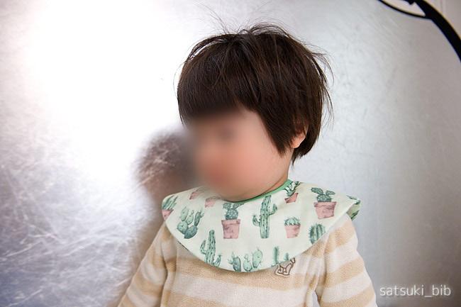 f:id:Satsuki_bib:20190413052016j:plain