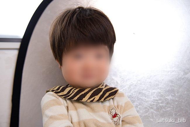 f:id:Satsuki_bib:20190413052333j:plain