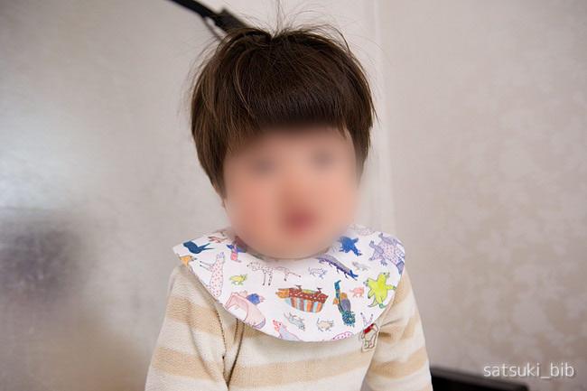 f:id:Satsuki_bib:20190413061352j:plain