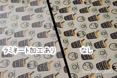 f:id:Satsuki_bib:20190603062707j:plain