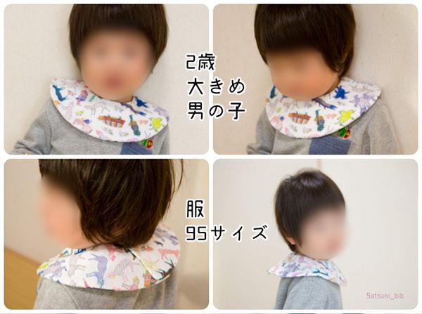 f:id:Satsuki_bib:20190724094243j:plain