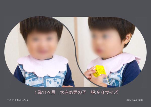 f:id:Satsuki_bib:20190803110607j:plain