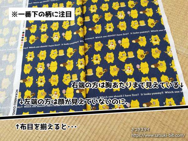 f:id:Satsuki_bib:20201022101456j:plain