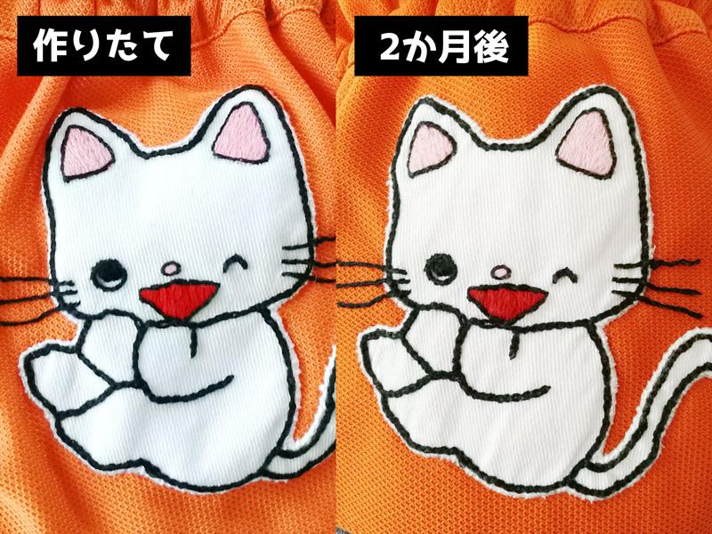 f:id:Satsuki_bib:20201126161046j:plain
