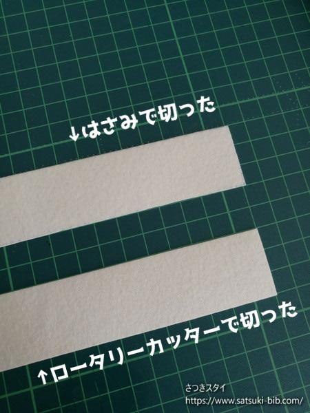 f:id:Satsuki_bib:20201203095055j:plain