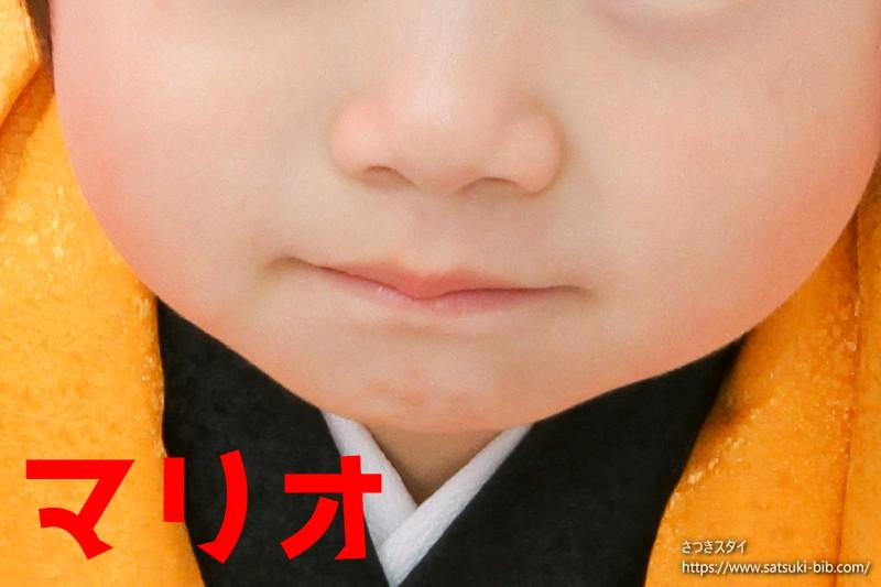 f:id:Satsuki_bib:20210206155733j:plain