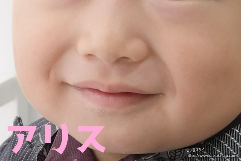 f:id:Satsuki_bib:20210206155736j:plain