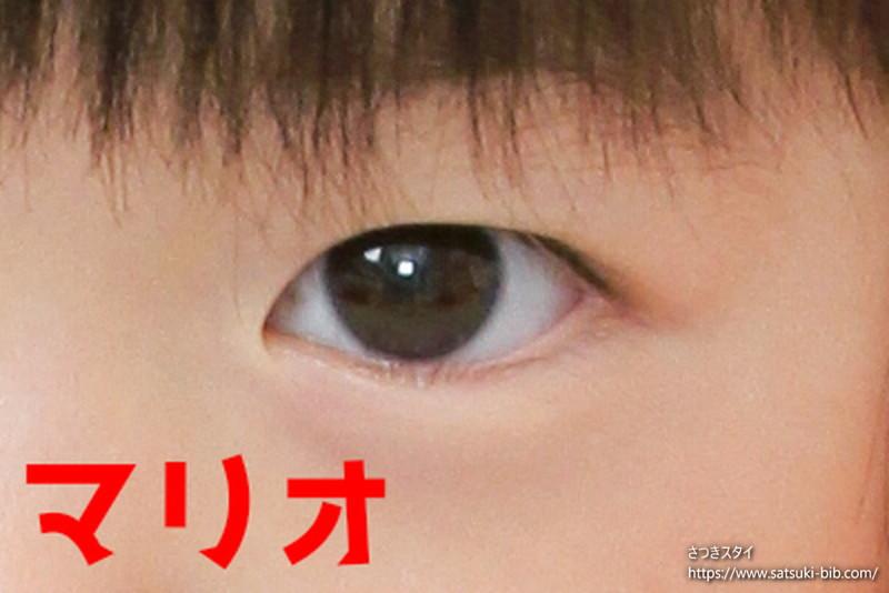f:id:Satsuki_bib:20210206160437j:plain