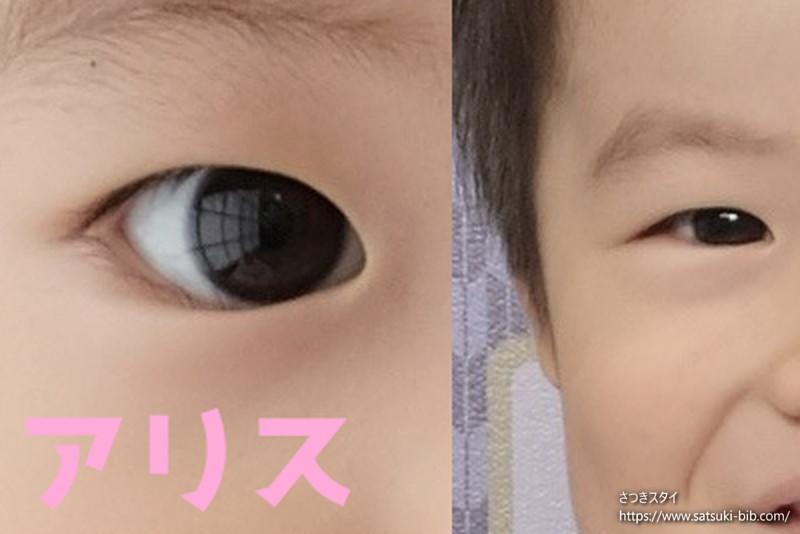 f:id:Satsuki_bib:20210206160442j:plain