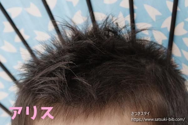 f:id:Satsuki_bib:20210208121838j:plain