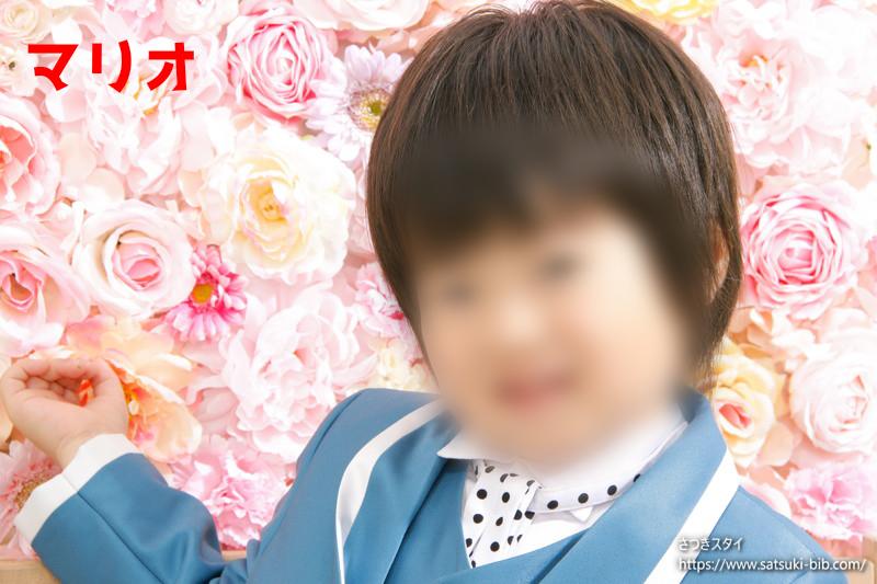 f:id:Satsuki_bib:20210213160401j:plain