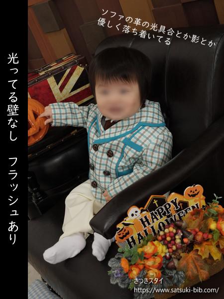 f:id:Satsuki_bib:20210215121214j:plain