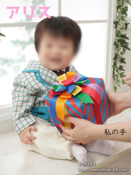 f:id:Satsuki_bib:20210215225447j:plain