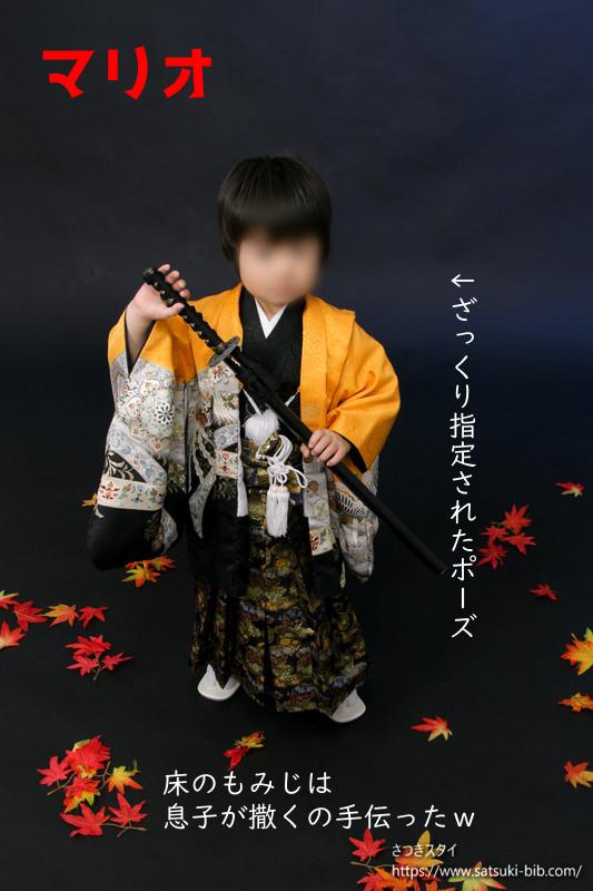 f:id:Satsuki_bib:20210215235954j:plain