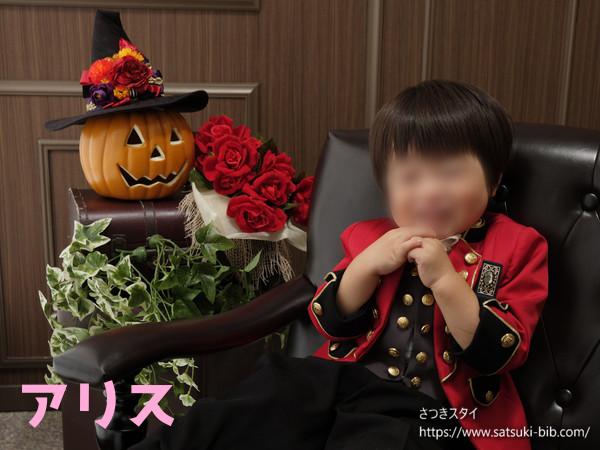 f:id:Satsuki_bib:20210218080609j:plain