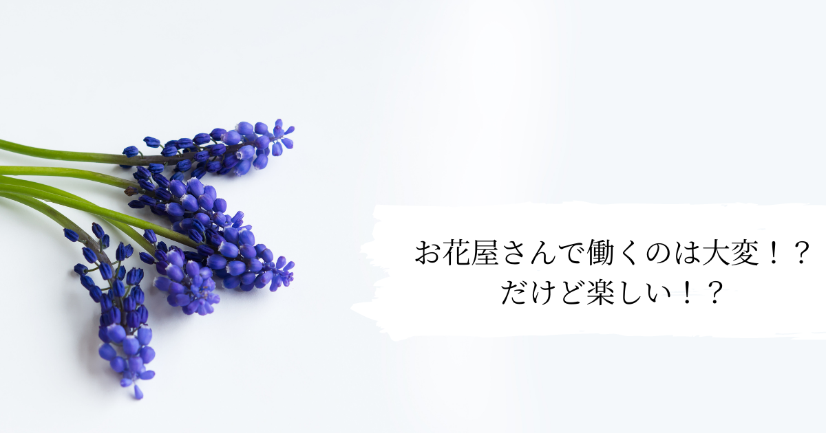 f:id:Sea0322:20210526155125p:plain