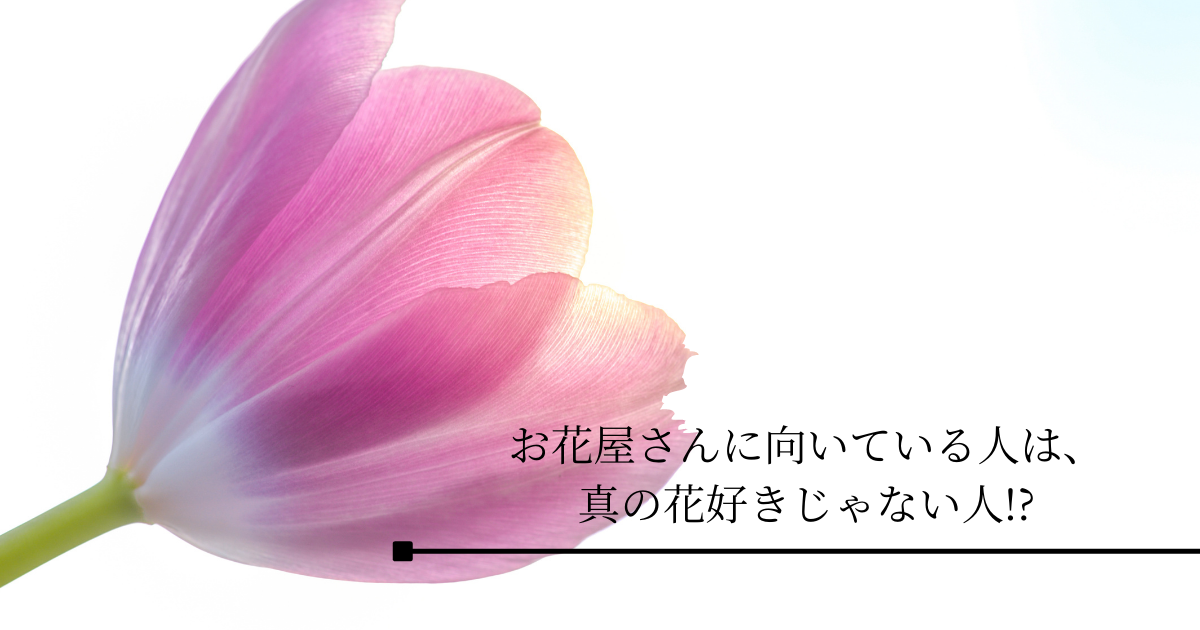 f:id:Sea0322:20210526155529p:plain