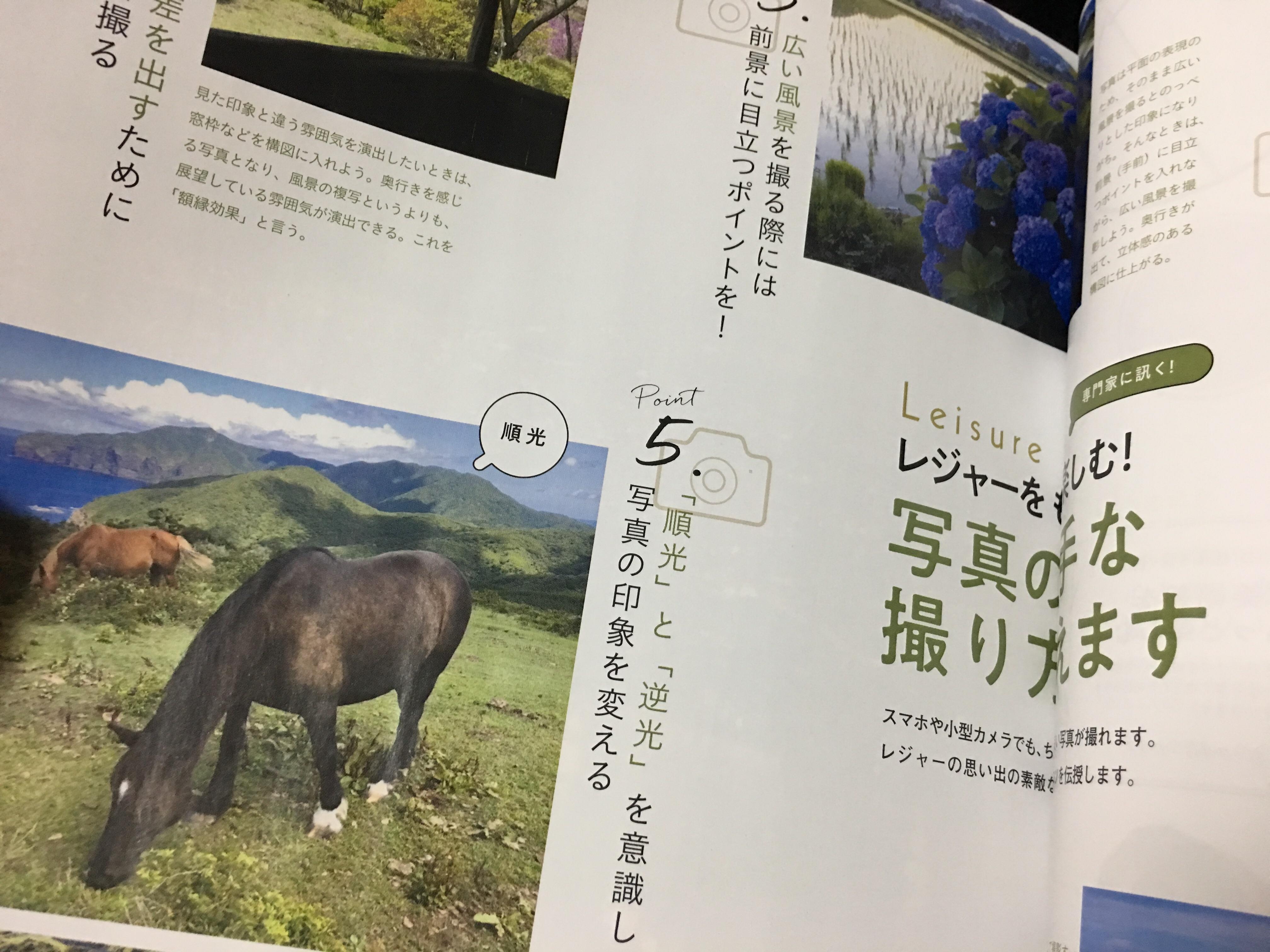 f:id:SeisoSakuya:20190504040925j:image