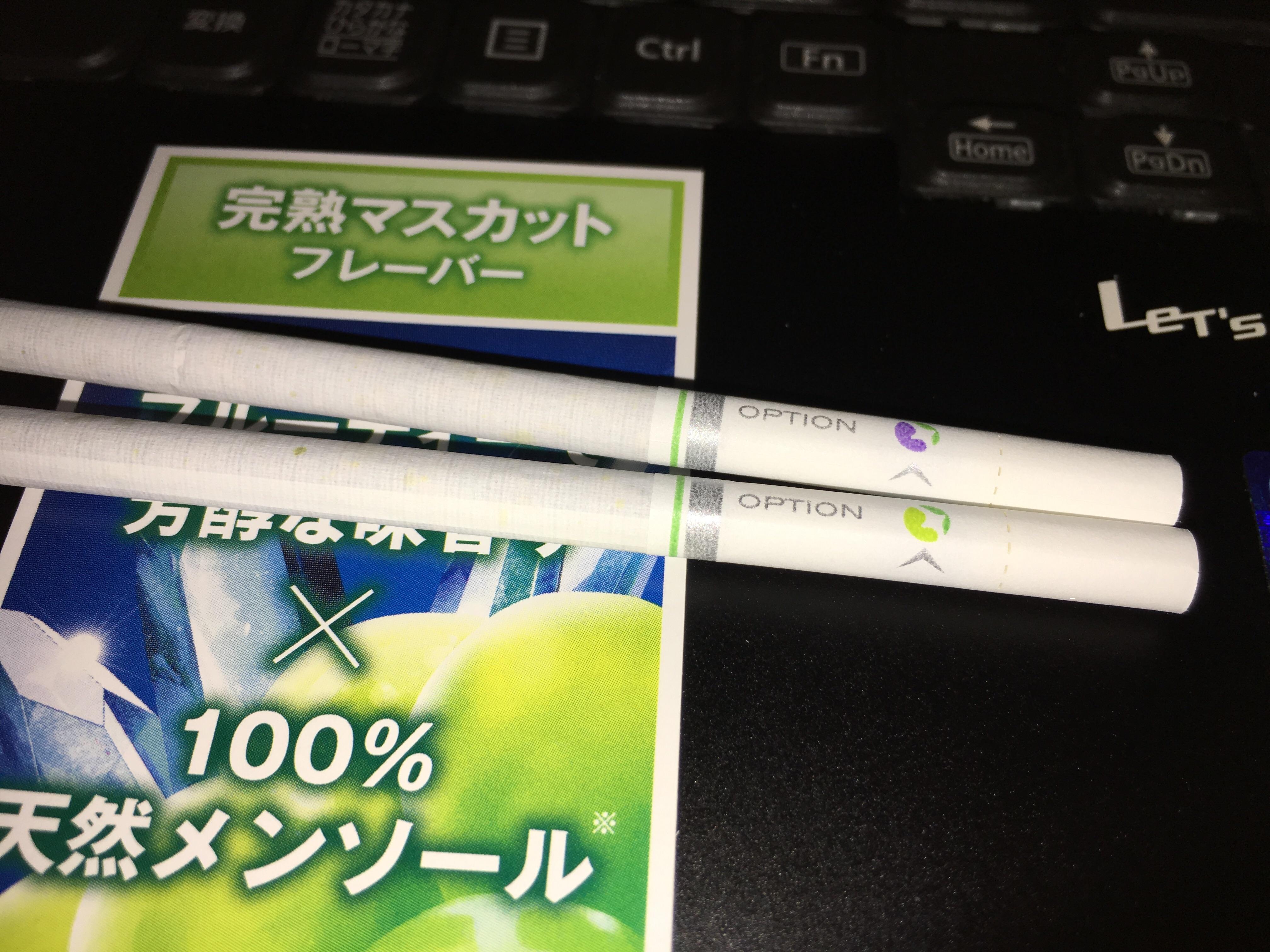 f:id:SeisoSakuya:20190518011201j:image