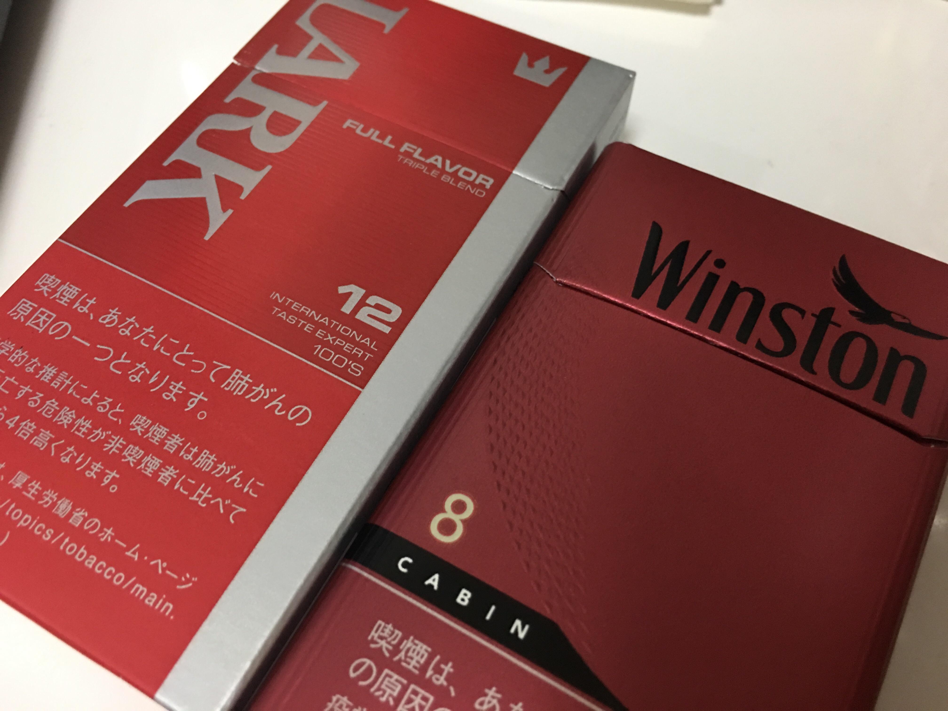 f:id:SeisoSakuya:20190528201452j:image