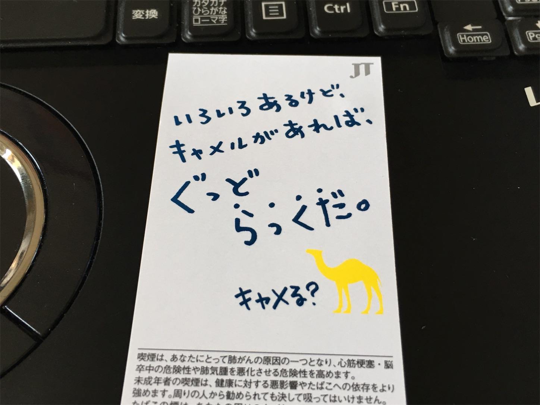 f:id:SeisoSakuya:20190727143013j:image