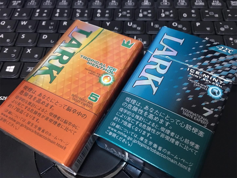 f:id:SeisoSakuya:20190730201915j:image