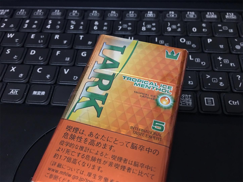 f:id:SeisoSakuya:20190730201925j:image