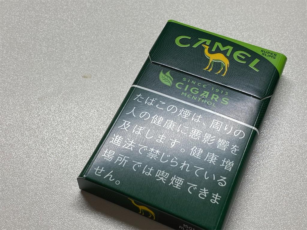 f:id:SeisoSakuya:20200306165251j:image