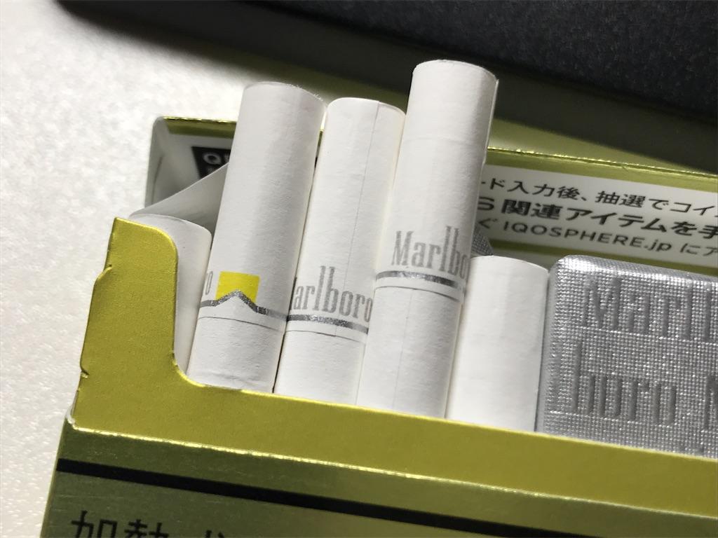 f:id:SeisoSakuya:20200316185825j:image