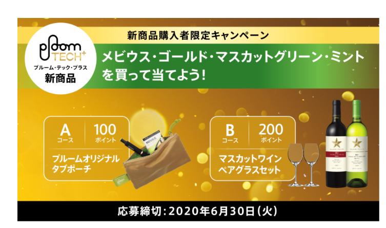 f:id:SeisoSakuya:20200403175310p:plain