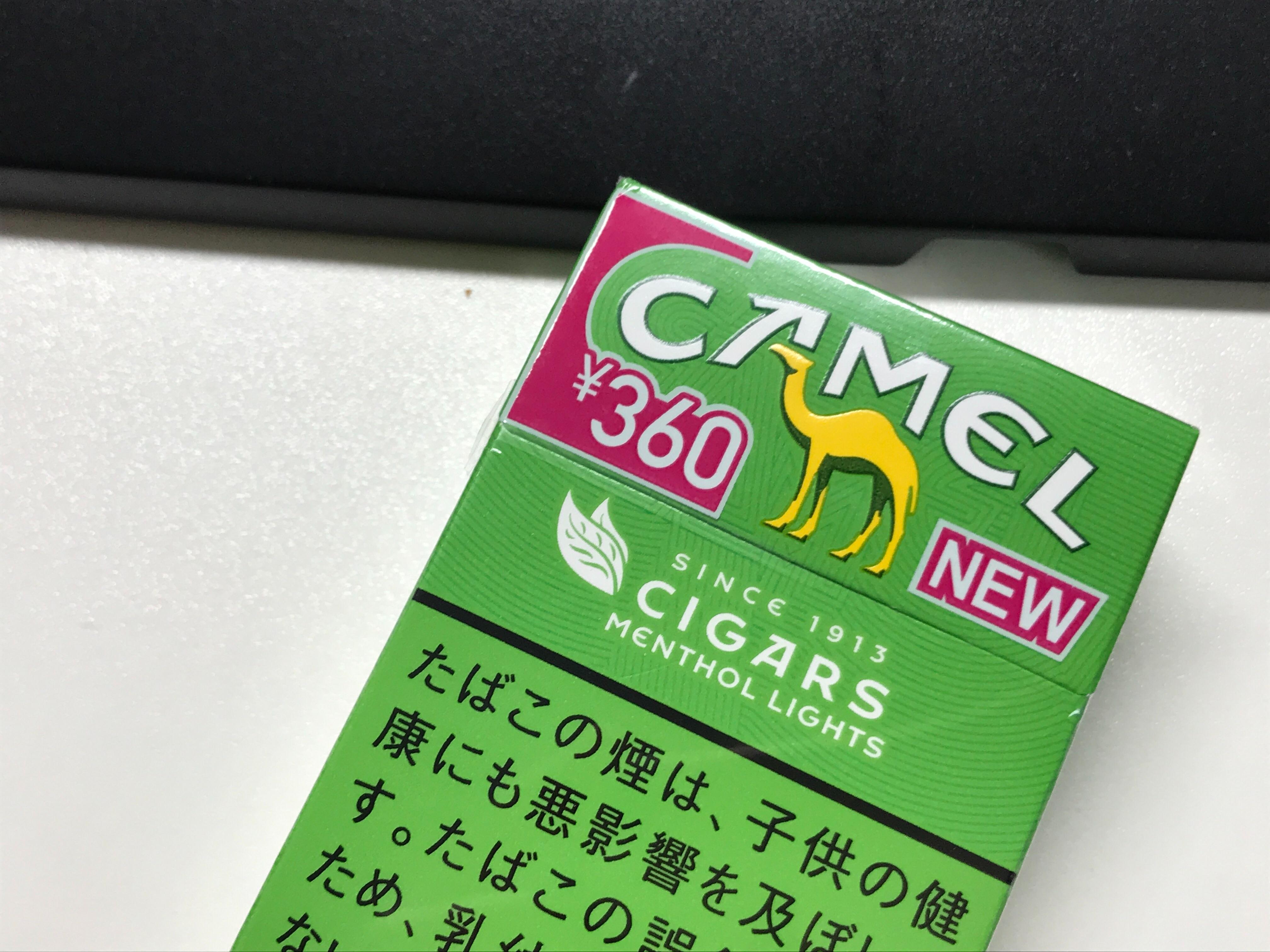 f:id:SeisoSakuya:20200531020539j:image