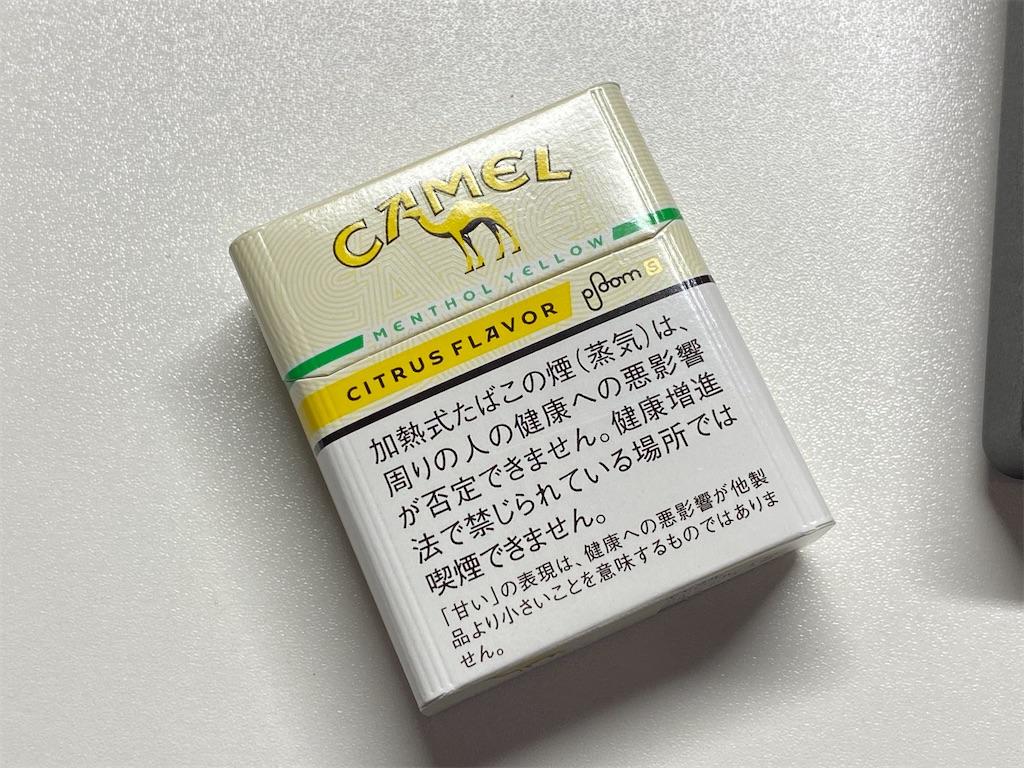 f:id:SeisoSakuya:20200710230748j:image