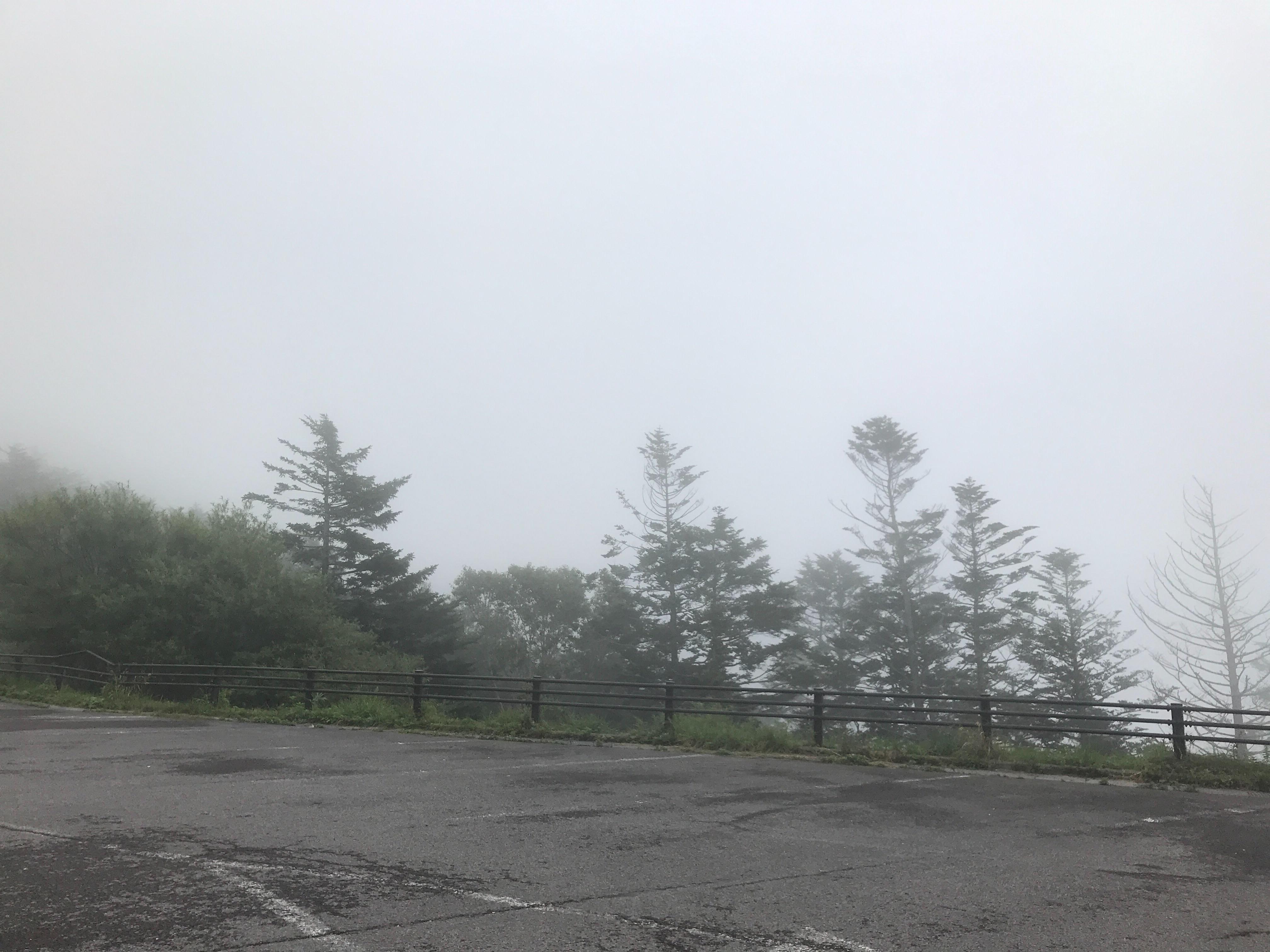 f:id:SeisoSakuya:20200918171600j:image